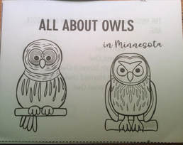 mini-book-owls-Minnesota-kids-class